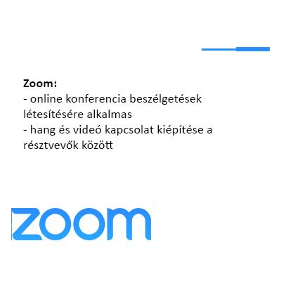 Zoom_videochat